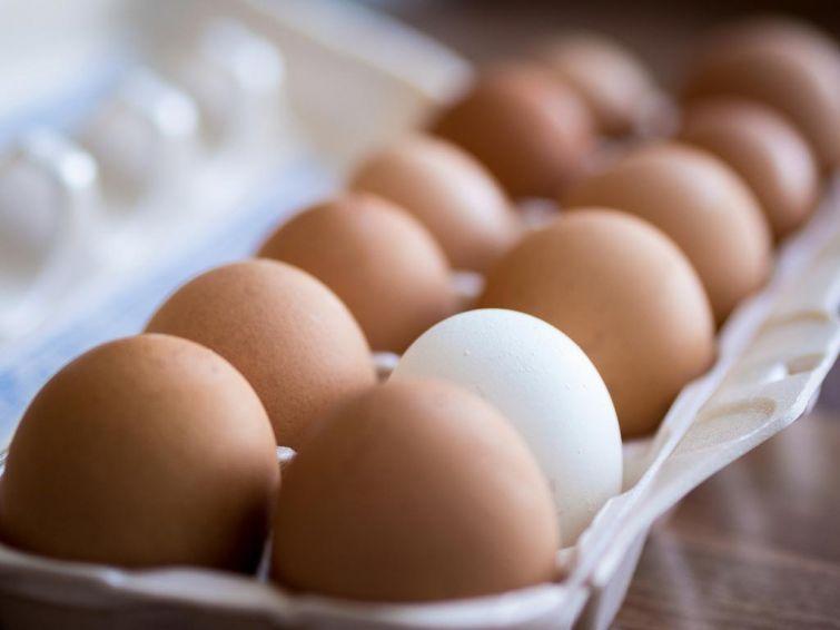 Как отличить натуральные яйца