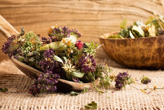 Как правильно собирать лекарственные растения